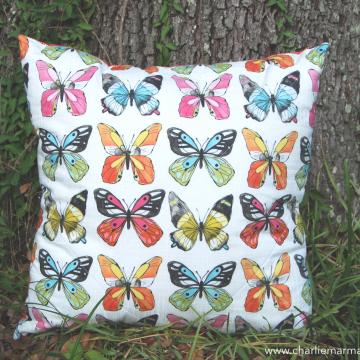Quillow {Flutter}